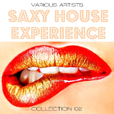 House Experience Collection (2012)
