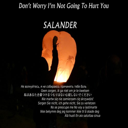 Salander - Don't Worry I'm Not Going To Hurt You (2014) Lossless + mp3